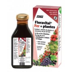Floravital (ss gluten, ss levure) 250 ml