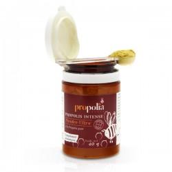 Poudre propolis ultra pot 40 g