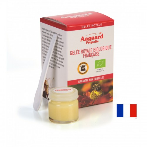 GELEE ROYALE FRANCAISE 10g
