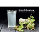 Cure Sève de bouleau fraîche 2X1,5 L