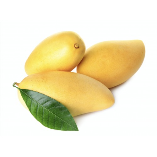 Mangue Ataulfo Equateur