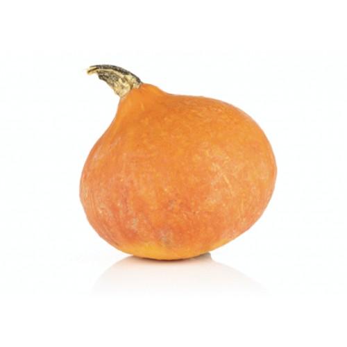 Potimarron Orange France (1 pièce)