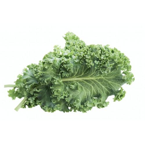 Chou Kale France (350 g)