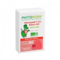 Dragonnettes Bouclier goût fraise 40 gr
