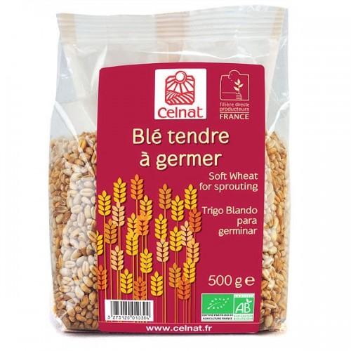 BLE TENDRE A GERMER 500G